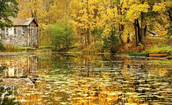 湖に浮かぶ古い木のボート