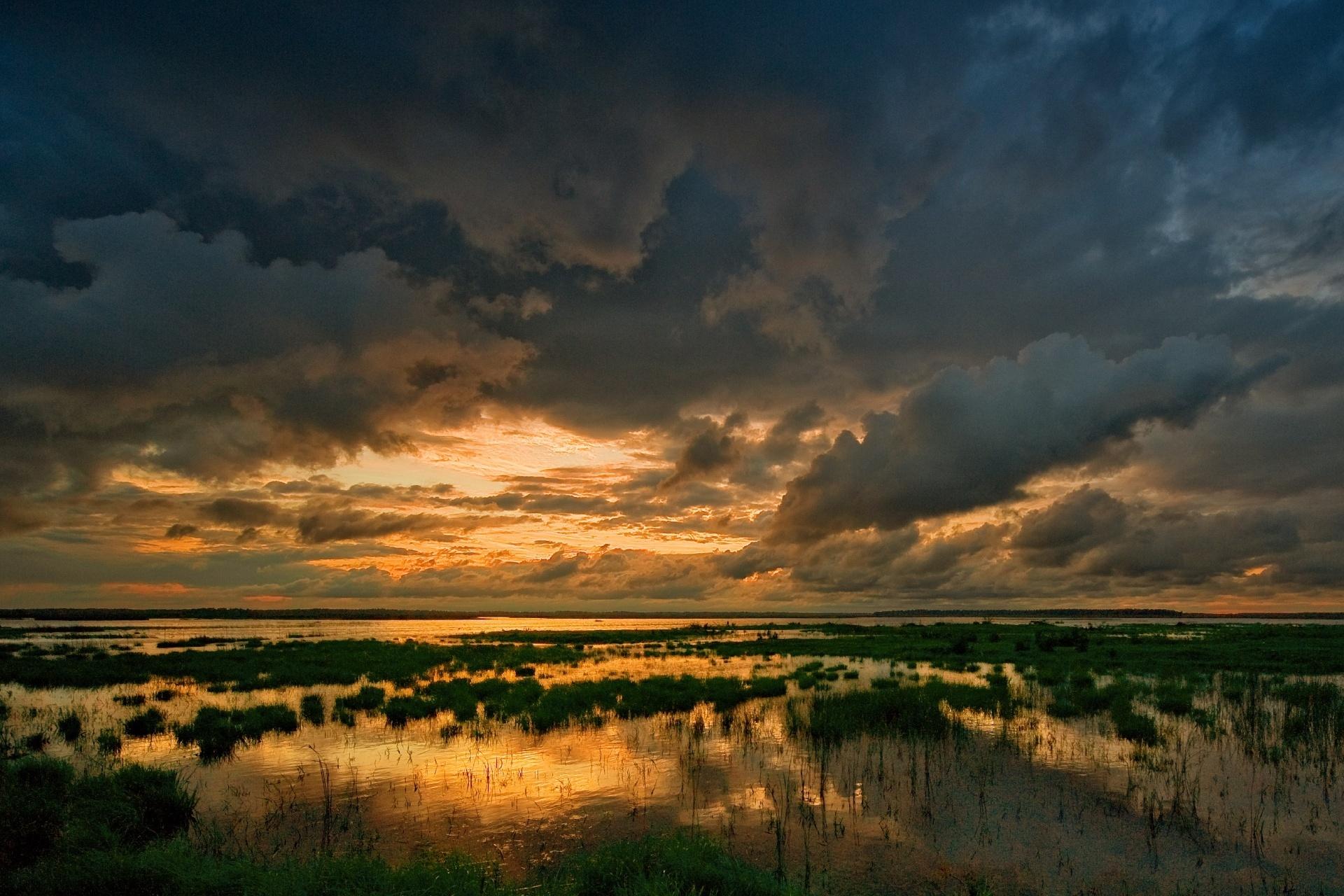夏の夕方の湖
