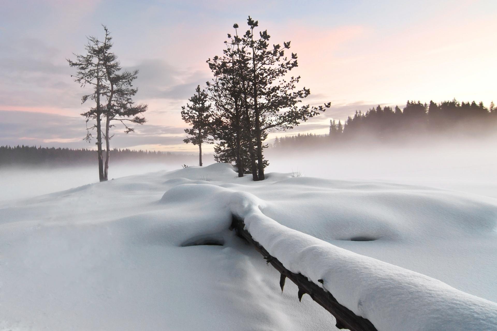 霧に包まれる冬の湖