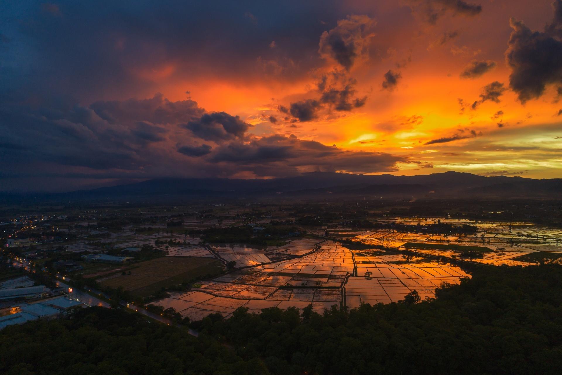 夕焼けの水田 タイの田園風景