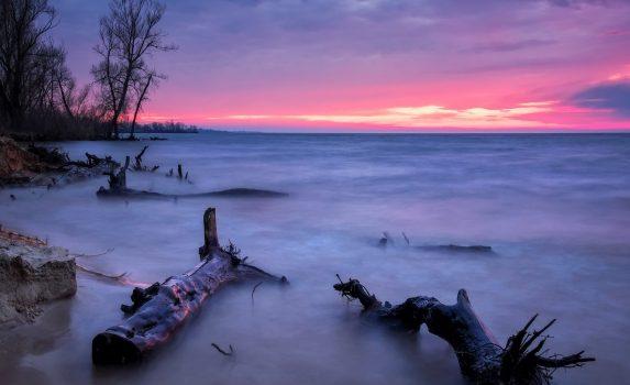美しい夏の風景 夕焼けと流木と砂浜