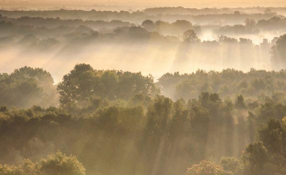 朝霧のモラヴィア チェコの風景
