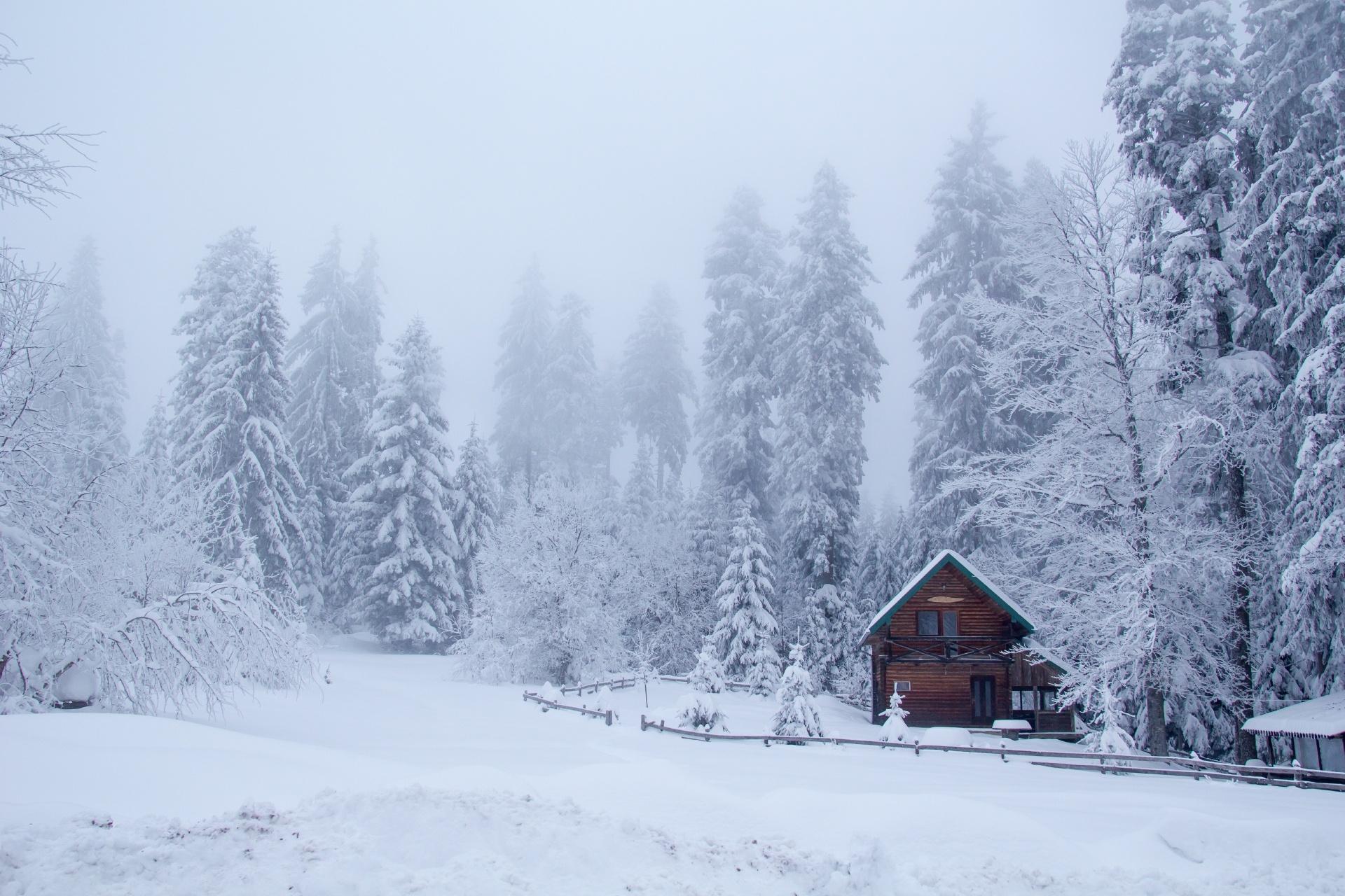 森の中のコテージ 冬の風景