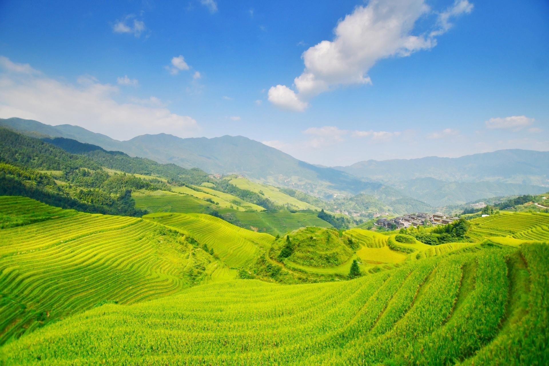 中国湖南省 棚田の風景