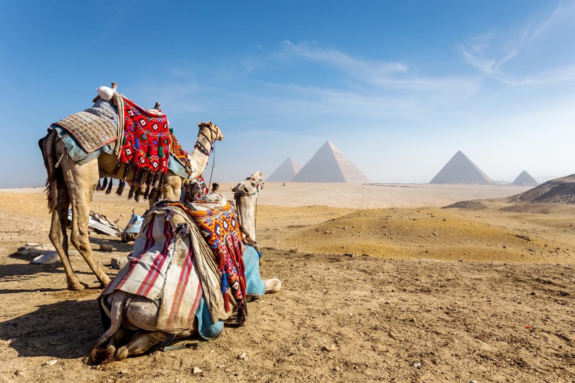 エジプト カイロ ギザのピラミッドのある風景