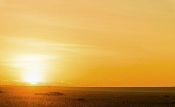 サバンナの日の出 サバンナの朝の風景 ケニアの風景
