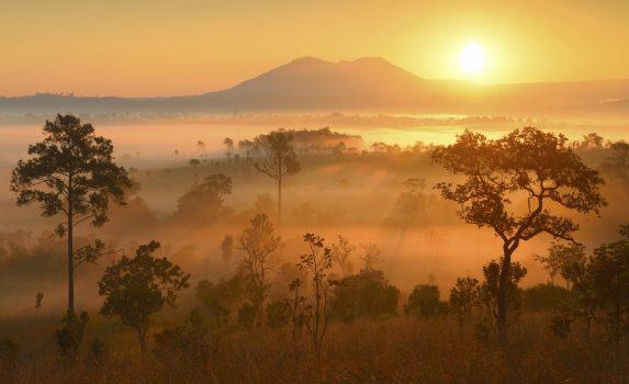 日の出のトゥン・サレーン・ルアン国立公園 タイの風景