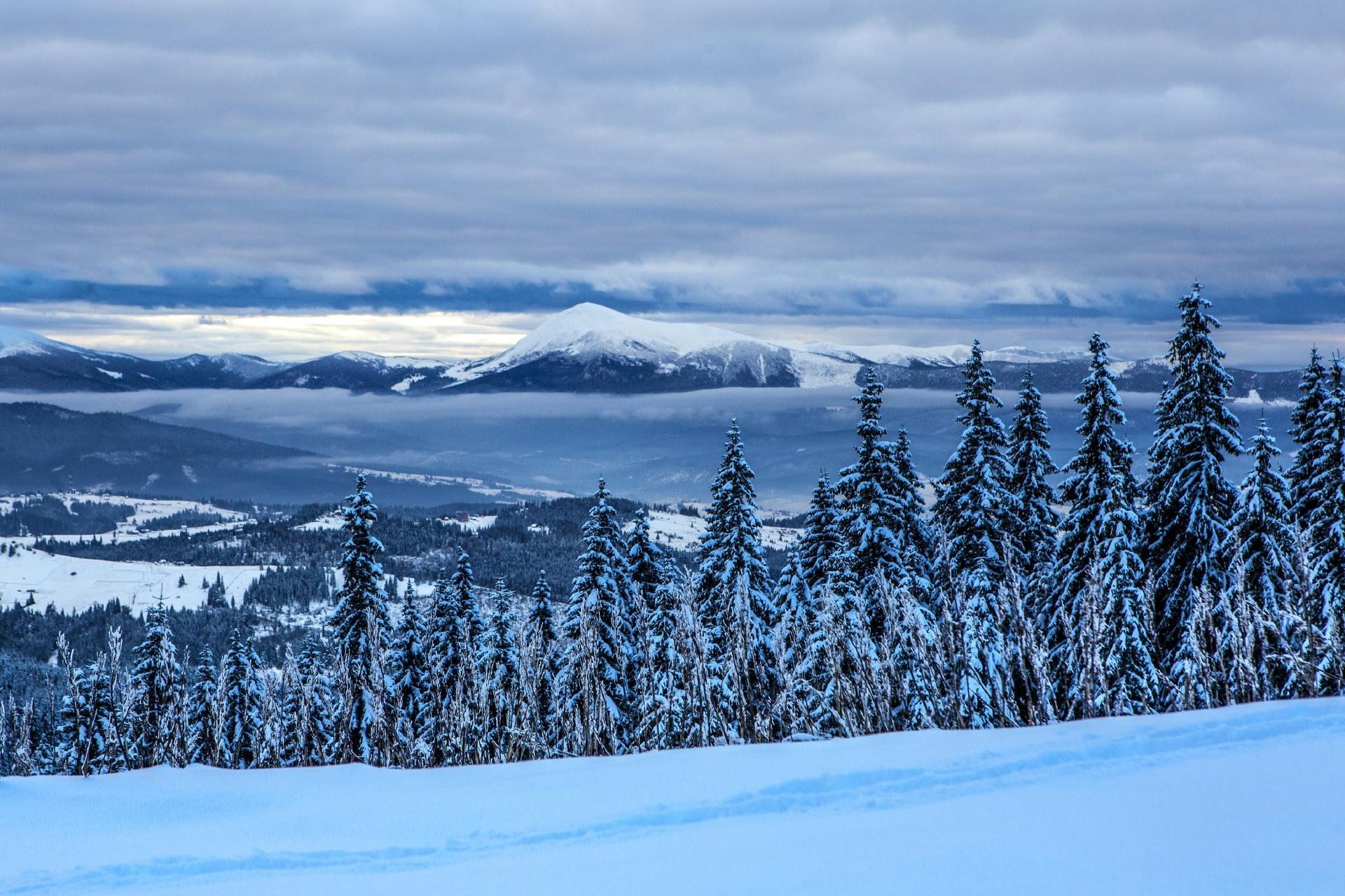 冬のカルパチア山脈の風景 ウクライナの風景