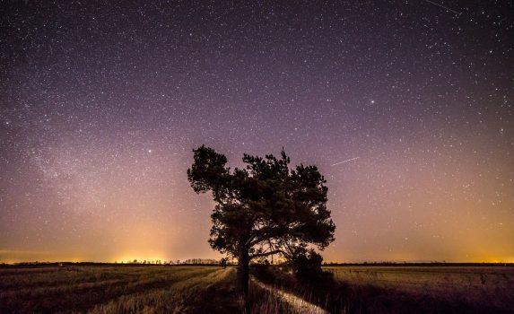 フィンランドの夜の風景 フィンランドの風景
