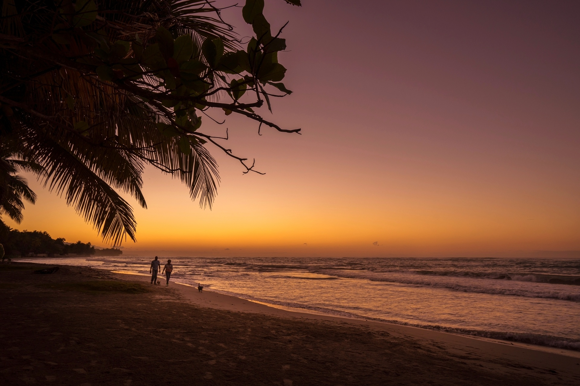 朝焼けのビーチ ハイチの風景