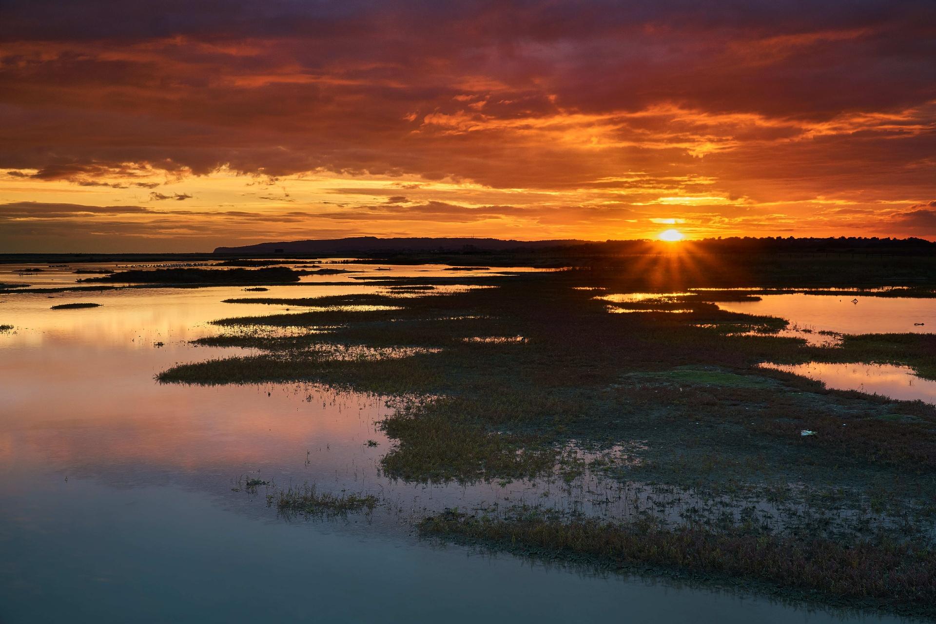 夕暮れの湿地帯の風景 ライ イースト・サセックス イングランド