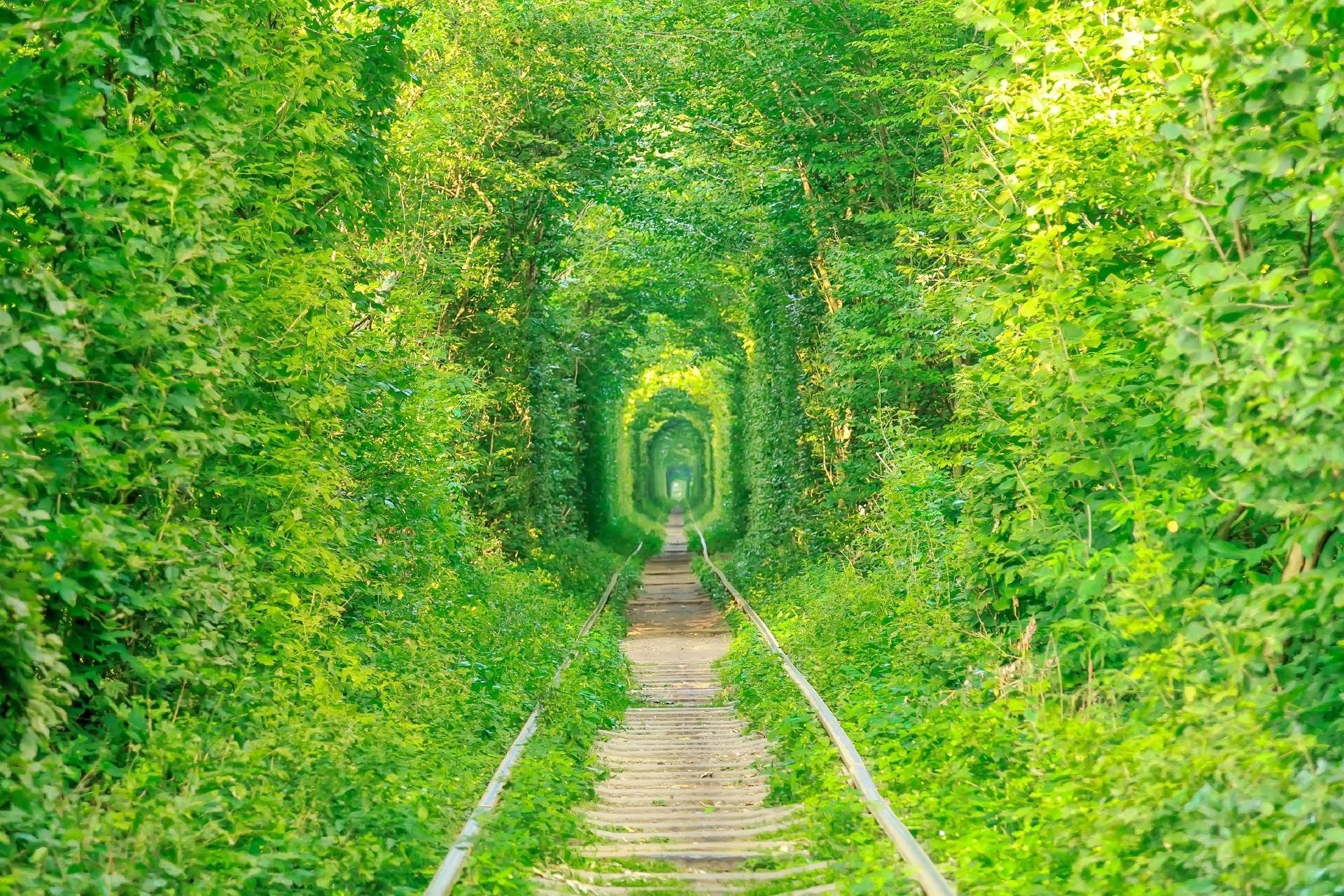 「恋のトンネル(愛のトンネル)」ウクライナ クレーヴェン ウクライナの風景