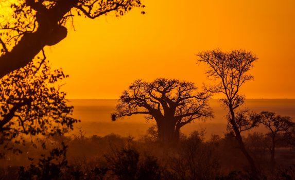 南アフリカの日の出の風景