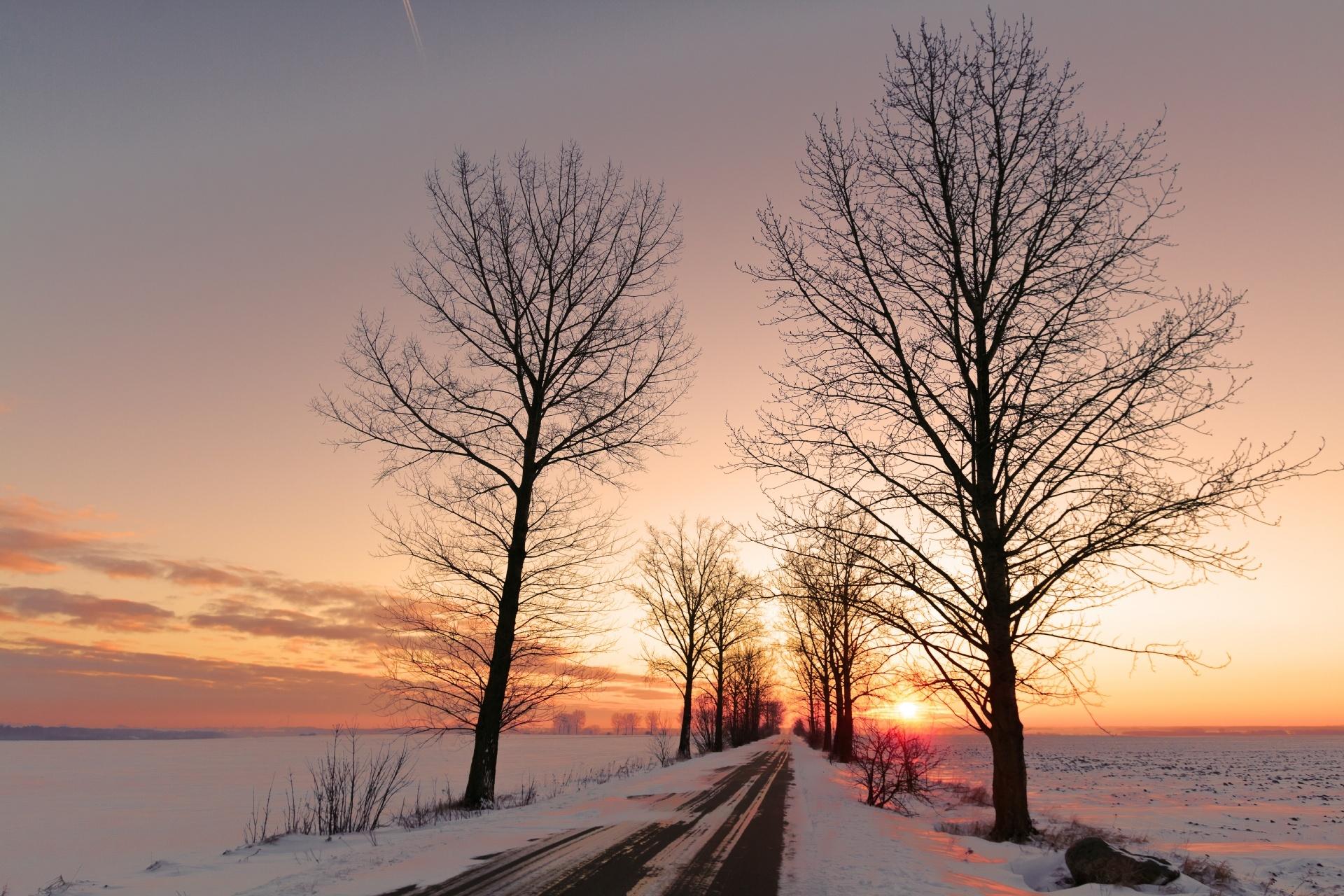 美しい冬の日 ポーランドの風景