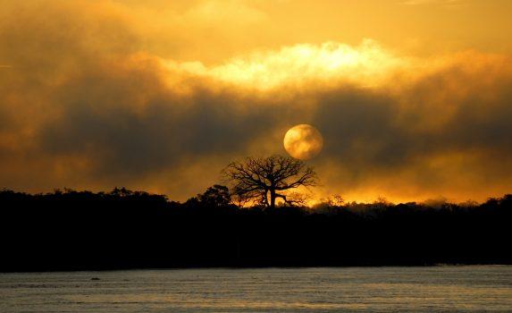 アマゾン川に昇る朝日 ブラジルの風景