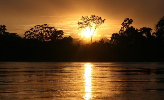 アマゾンの熱帯雨林と日の出の風景 ペルーの風景
