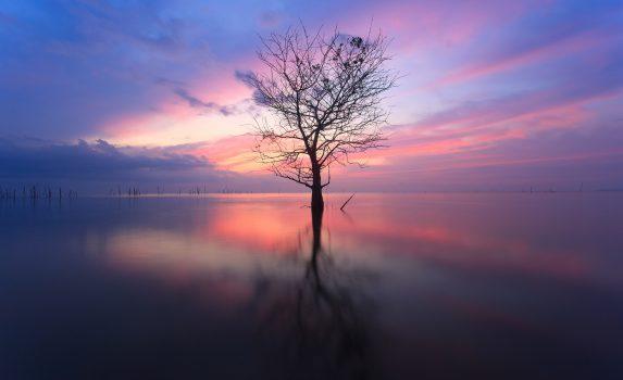 夜明けの湖 タイの風景