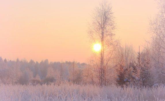 美しい冬の夕暮れ リトアニアの風景