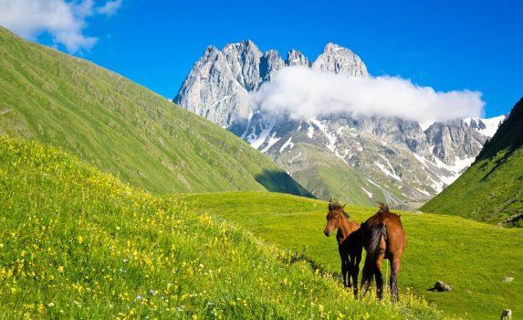 山間の谷と馬のいる風景 ジョージアの風景