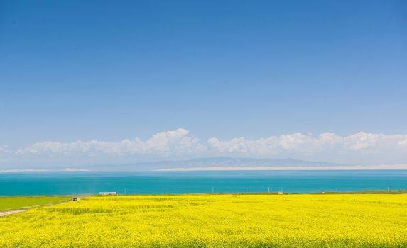 青海湖と菜の花の風景 中国の風景