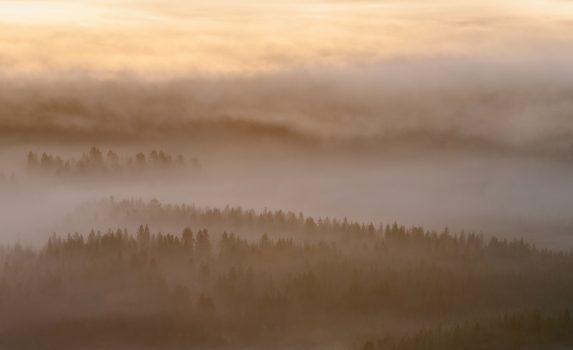 早朝の霧の風景 フィンランドの風景