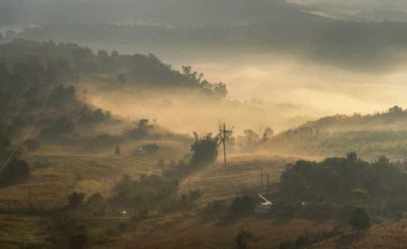 朝のカオコー国立公園 タイの風景