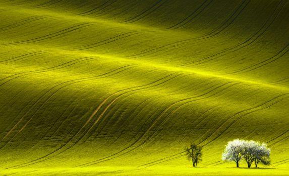 モラヴィアの風景 チェコの風景