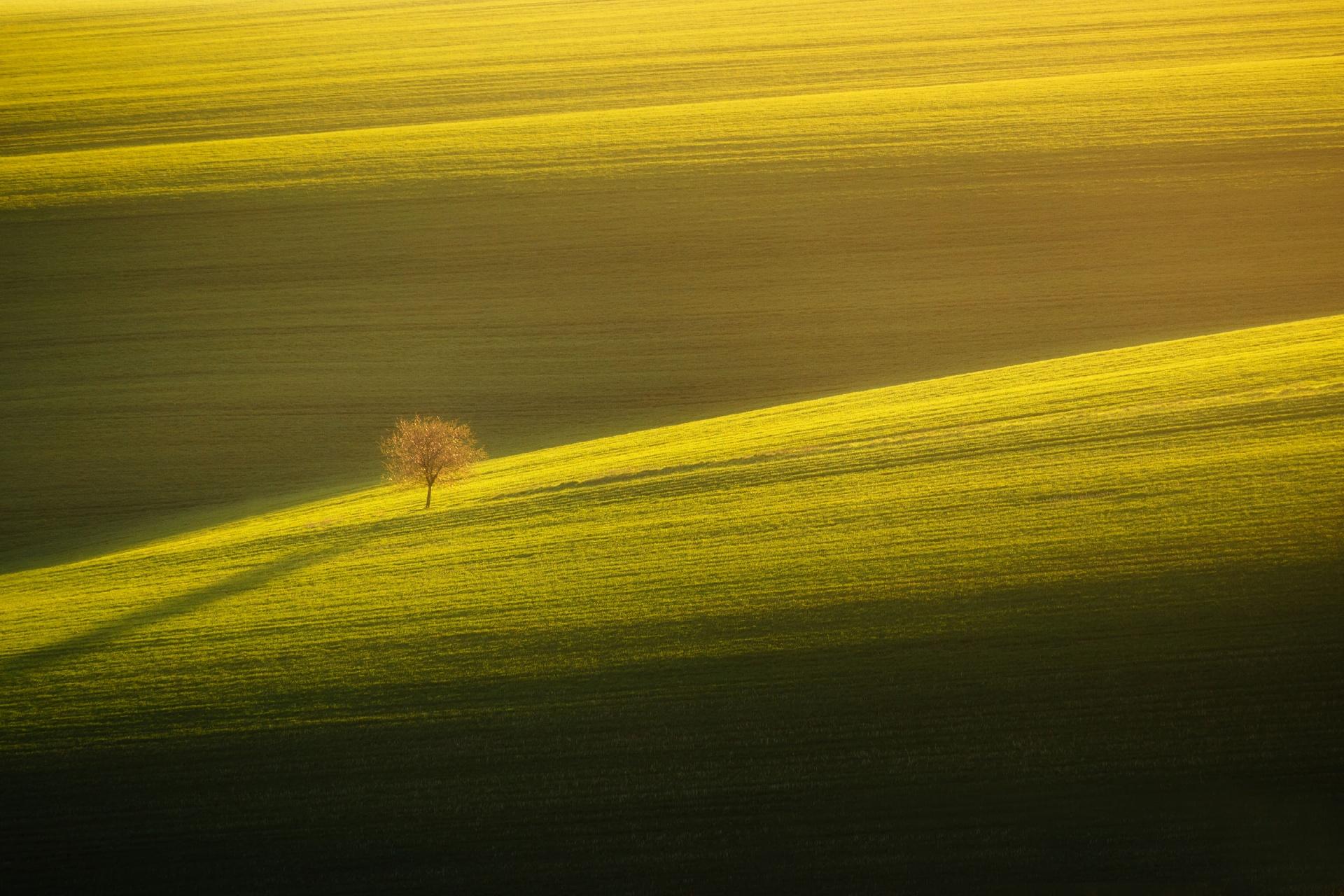 チェコ 春のモラヴィアの風景