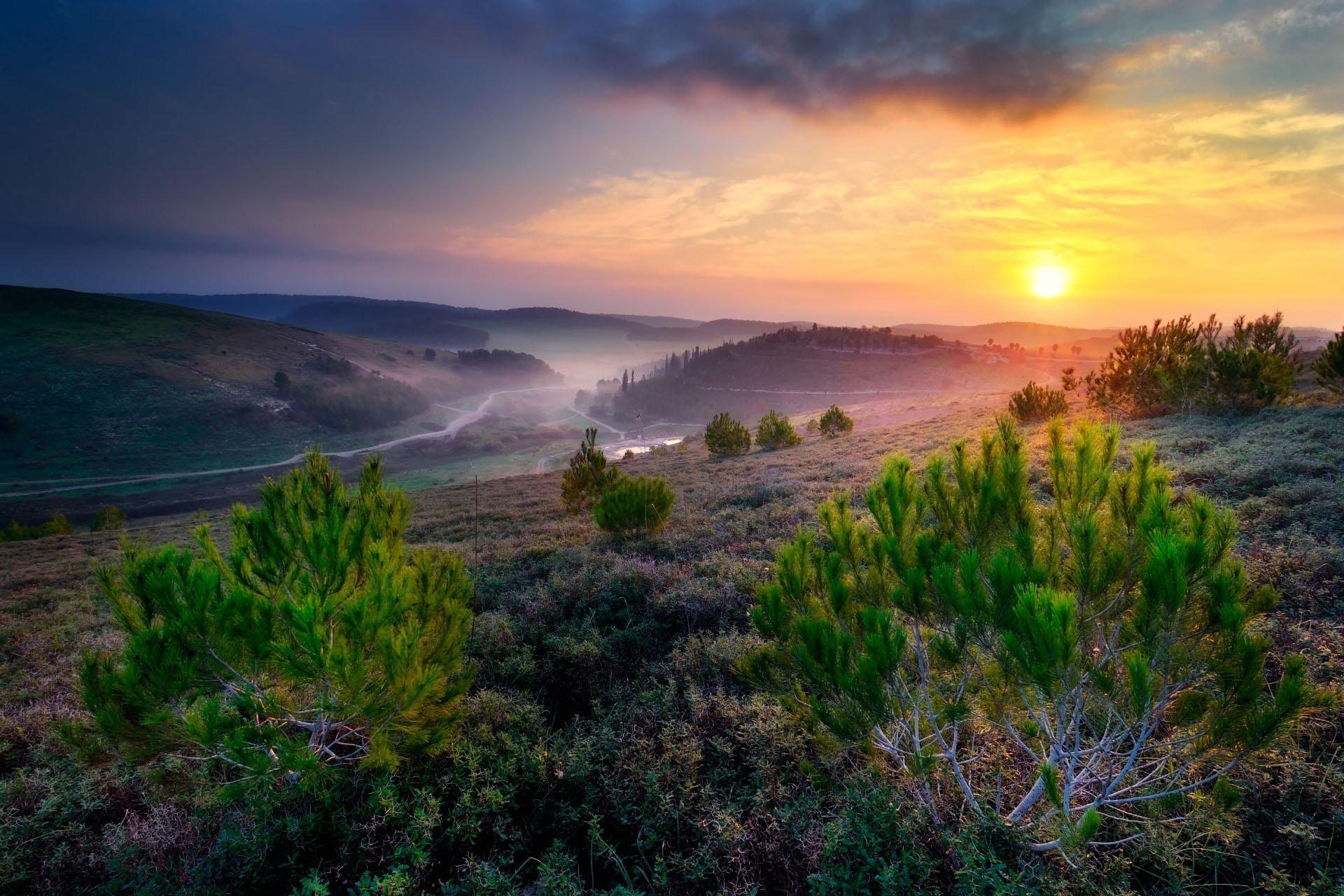 日の出の「平和の谷」の風景 イスラエルの風景