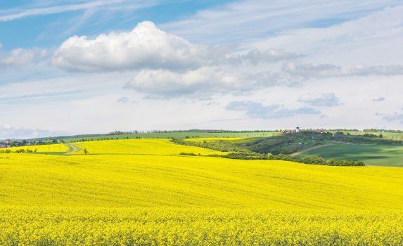 春のモラヴィアの風景 チェコの風景