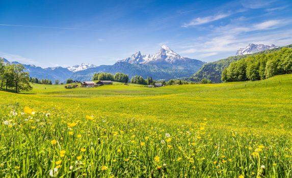 牧草地と花の咲く風景 ベルヒテスガーデン ドイツの風景