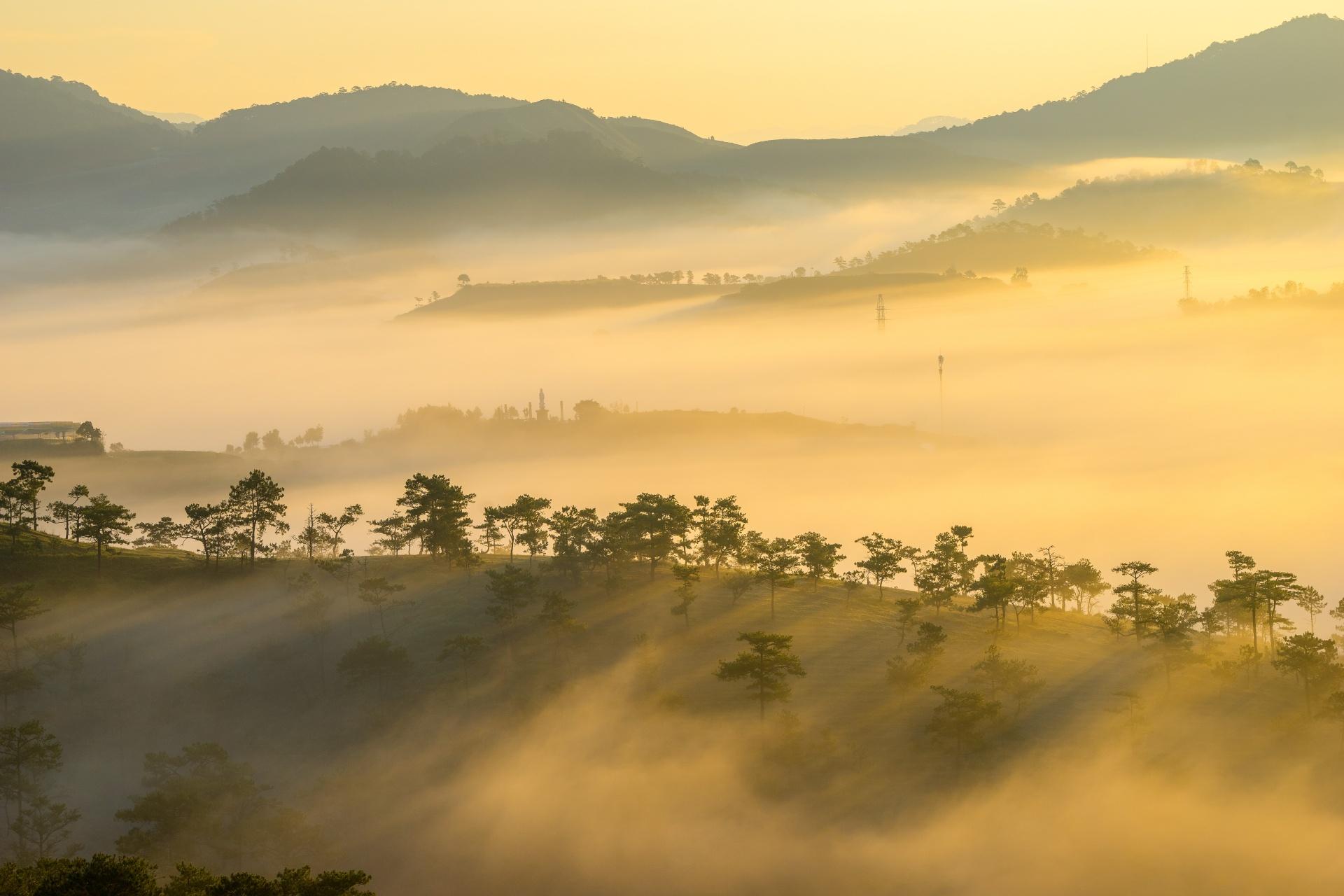 朝霧のダラットの風景 ベトナムの風景