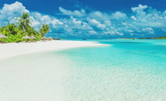 ヤシの木と美しい砂浜の風景 モルディブの風景
