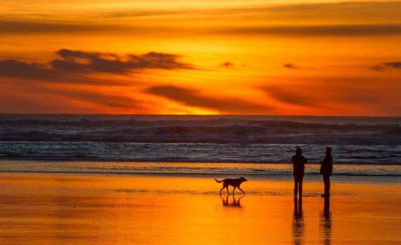 夕暮れの海辺の風景 アメリカの風景