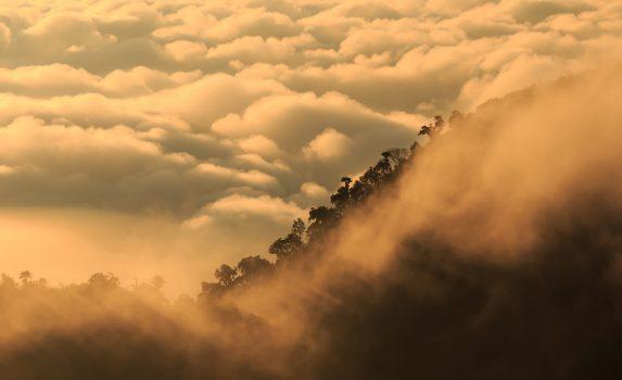 チェンマイ 霧の朝の風景 タイの風景
