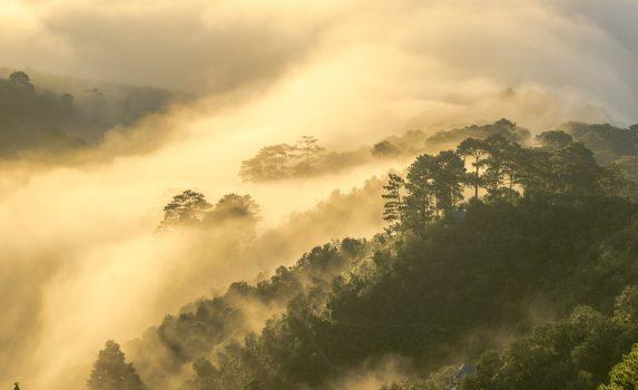 ダラットの風景 ベトナムの風景