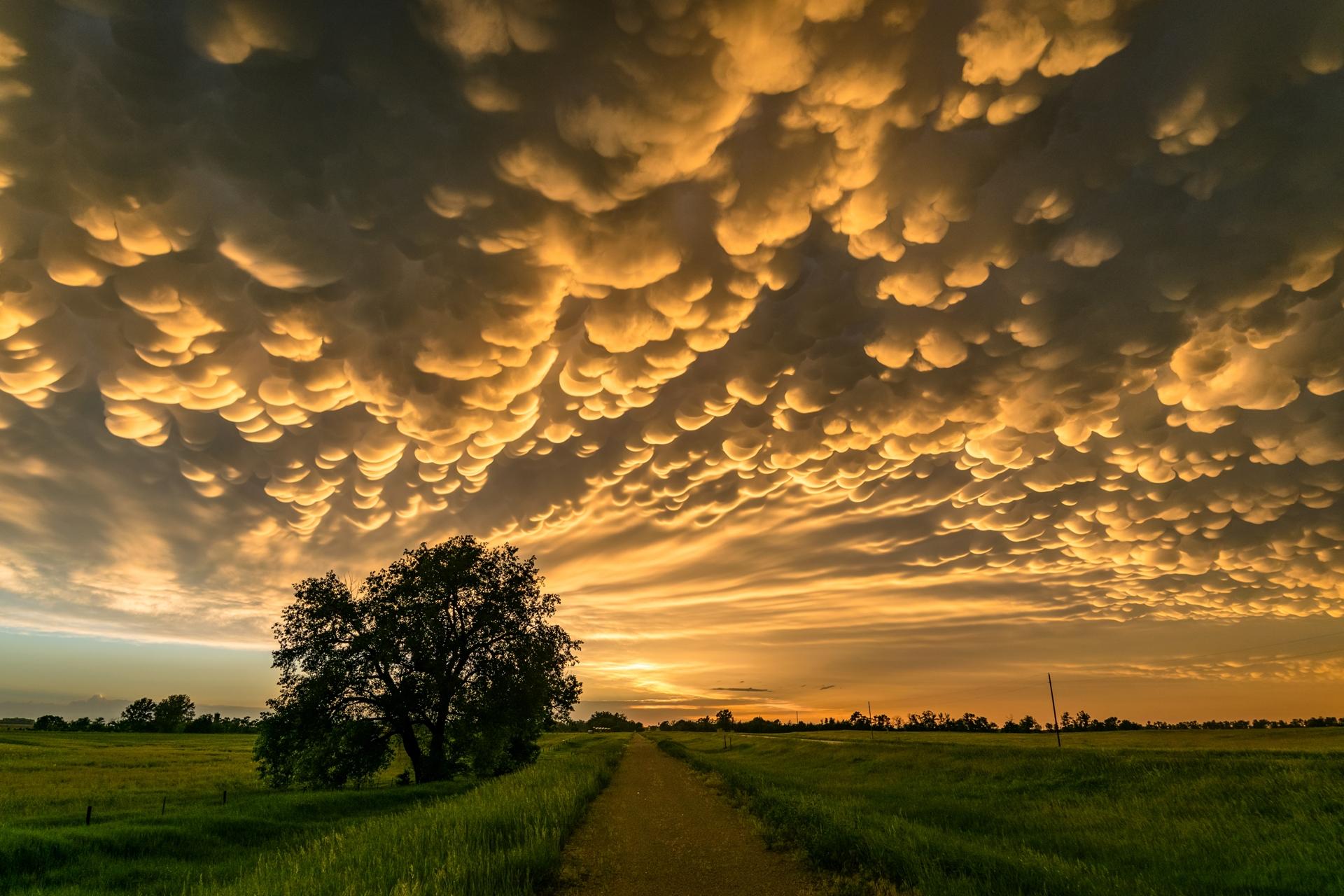 幻想的な夕暮れの風景 ネブラスカ アメリカの風景
