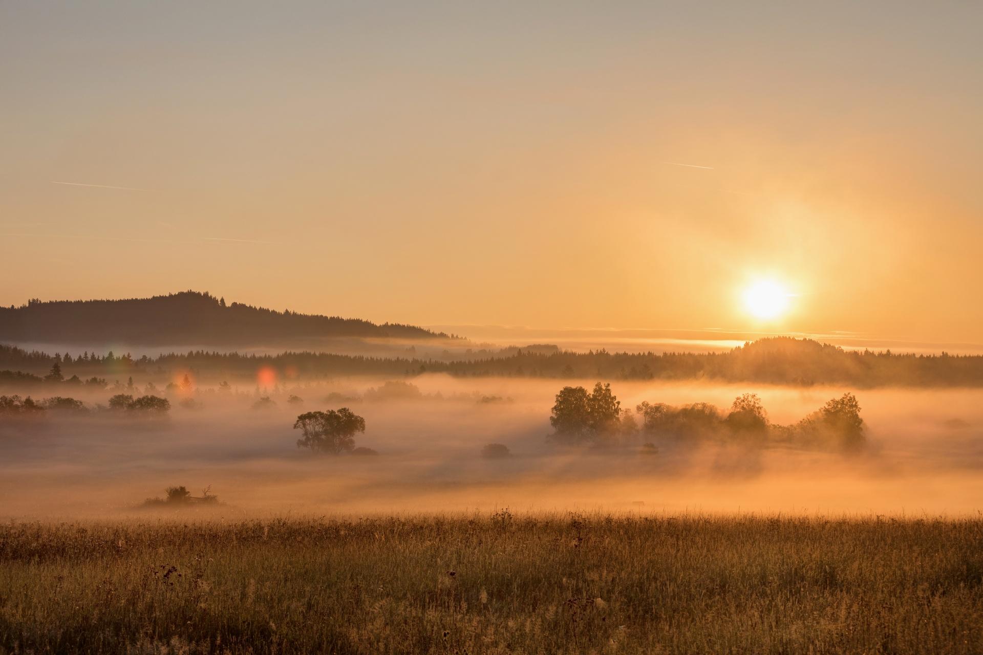 朝霧とボヘミアの森の風景 チェコの風景