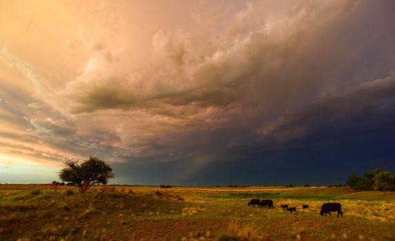 嵐の風景 ラ・パンパ パタゴニア アルゼンチンの風景