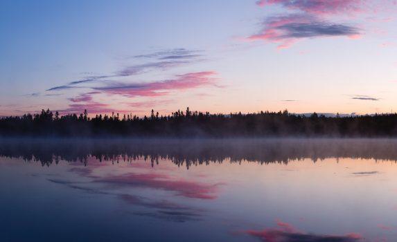 夏の夜明けの風景