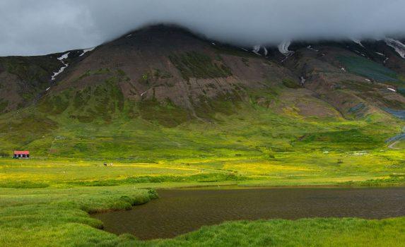 エイヤフィヨルズルの風景 アイスランドの風景