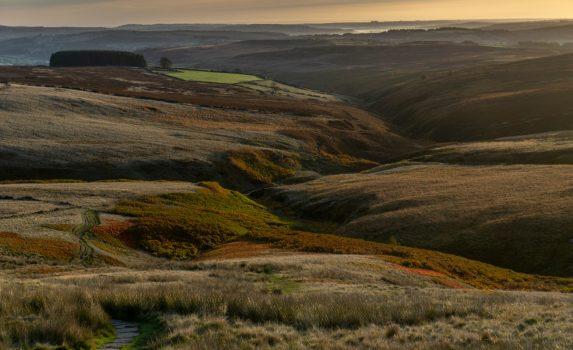 ハワース 秋のムーアの光景 イギリスの風景