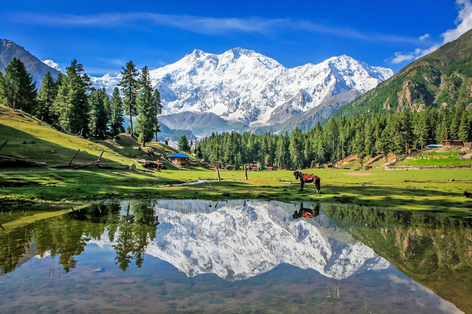 フェアリーメドウズの風景 パキスタンの風景