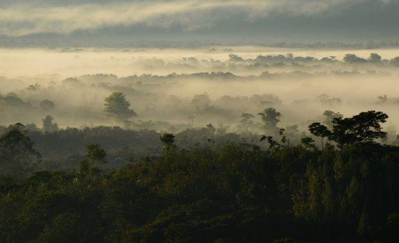 霧の朝のウアヤバンバ ペルーの風景