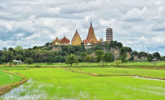 タムスア寺院と田んぼの風景 タイの風景