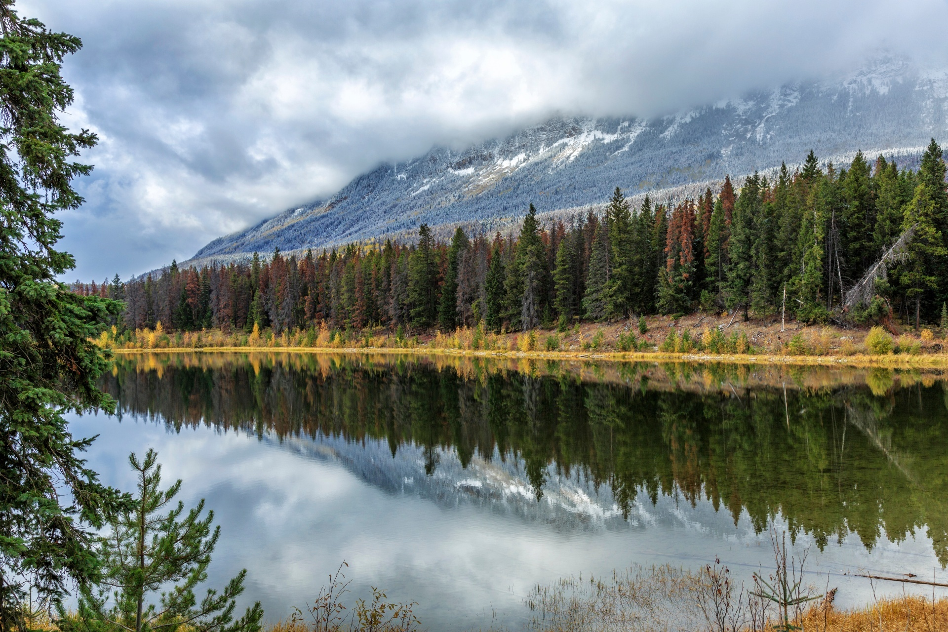 イエローヘッド湖の風景 カナダの風景