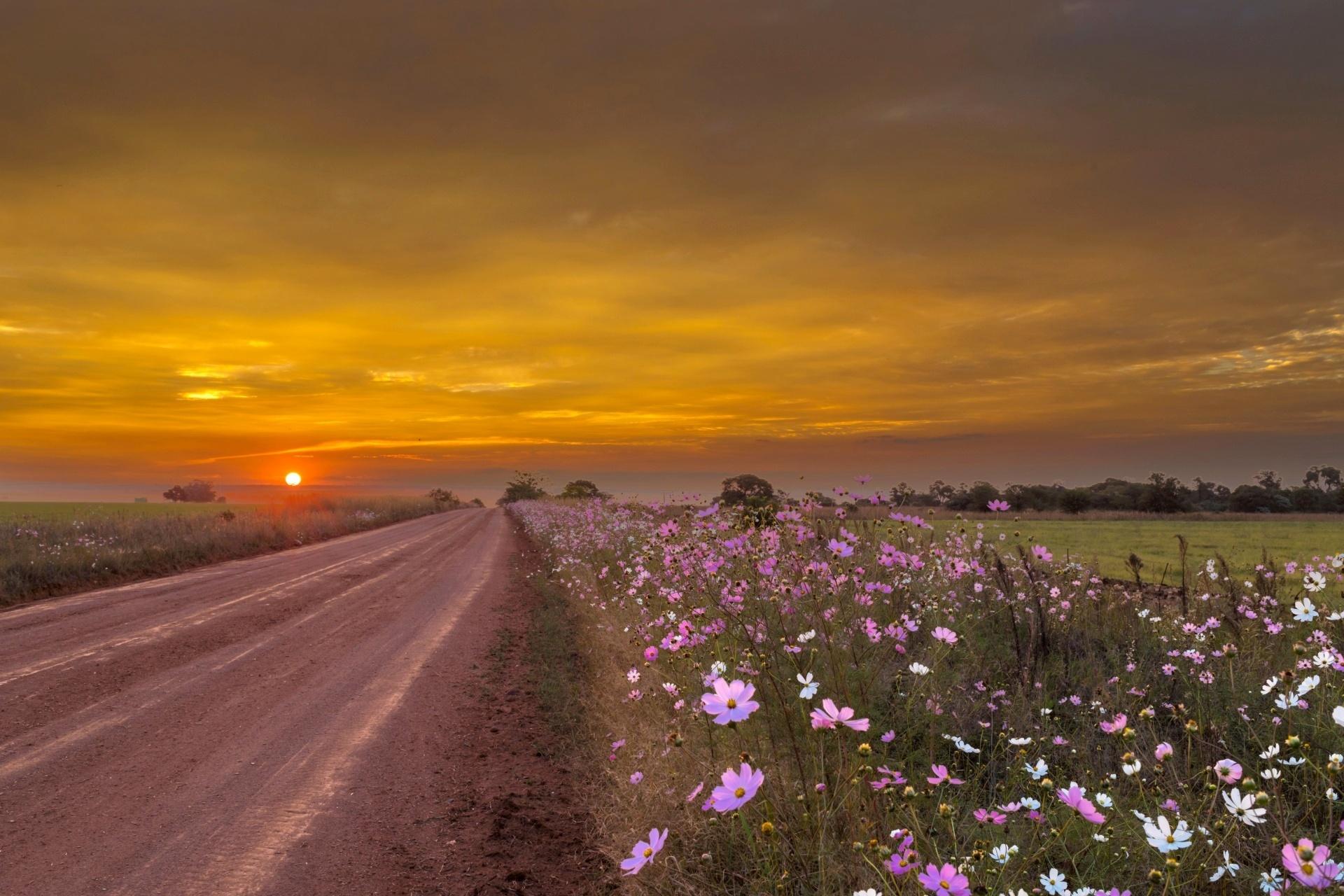 夕暮れの風景 南アフリカの風景