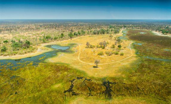 オカバンゴ・デルタの風景 ボツワナの風景