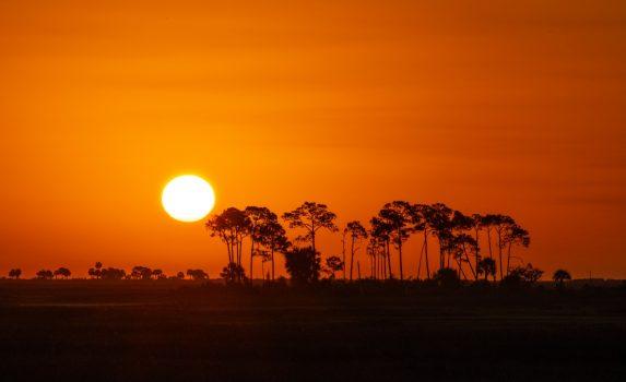 日の出の風景 ボツワナの風景