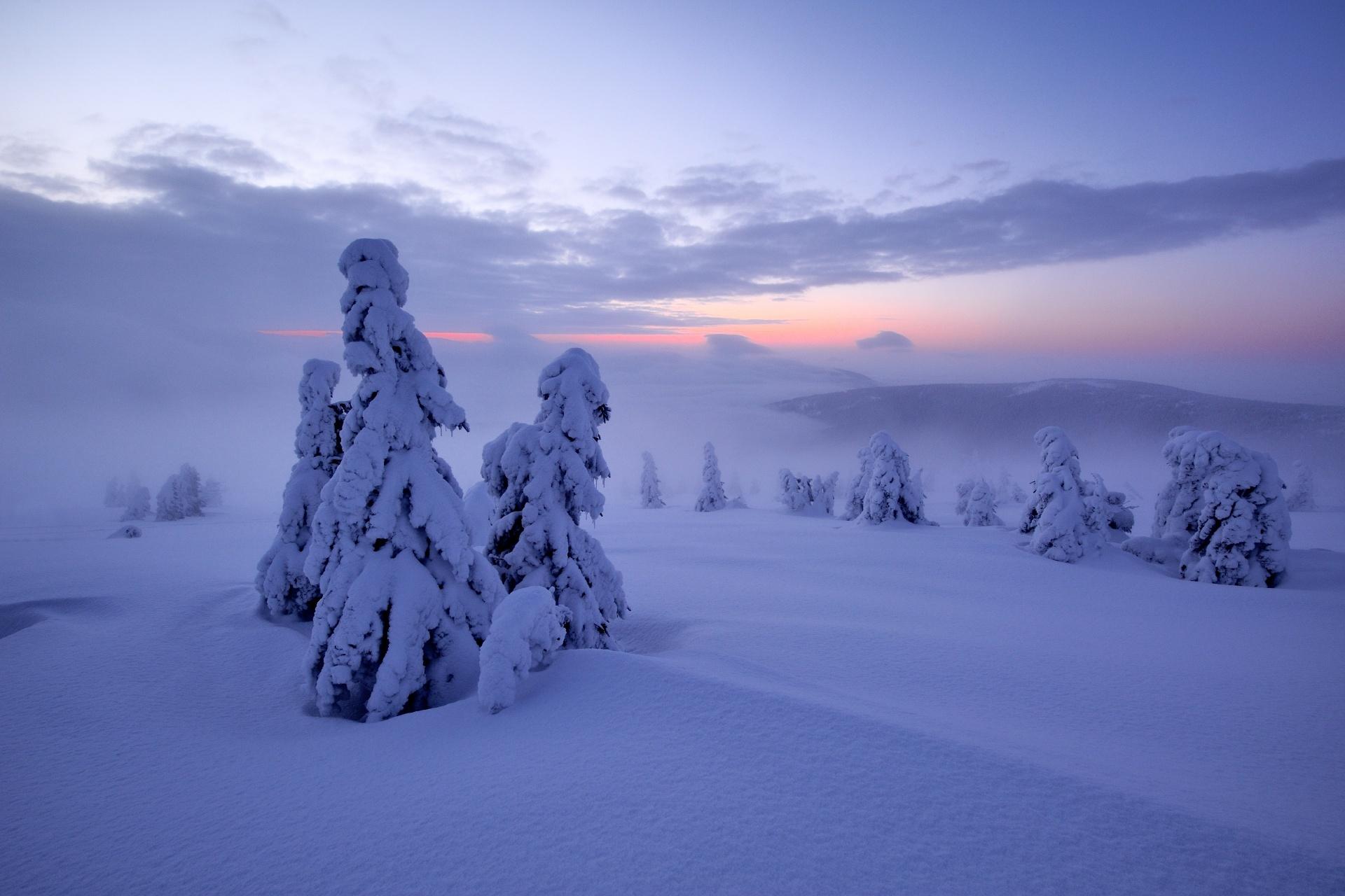 夜明けのクルコノシェ山脈 チェコの風景